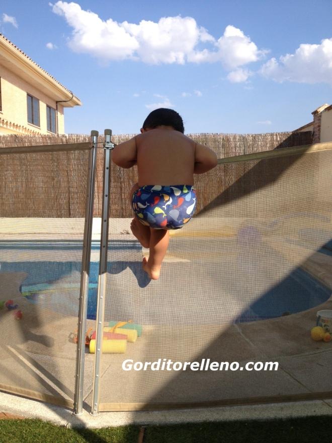 Saltando la valla de la piscina